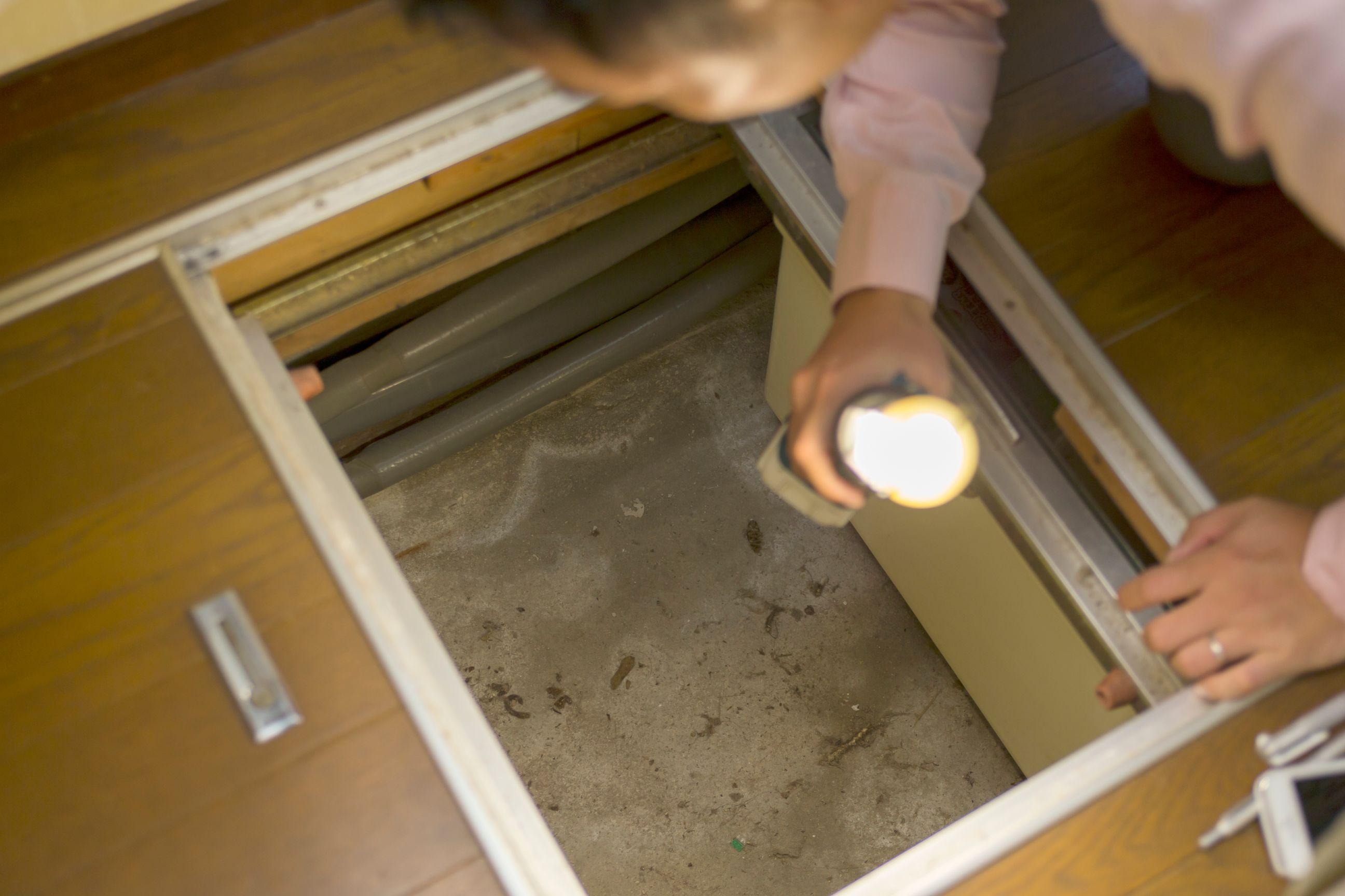 床下を確認している写真
