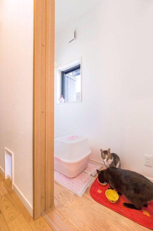 ネコちゃん専用の贅沢なスペース